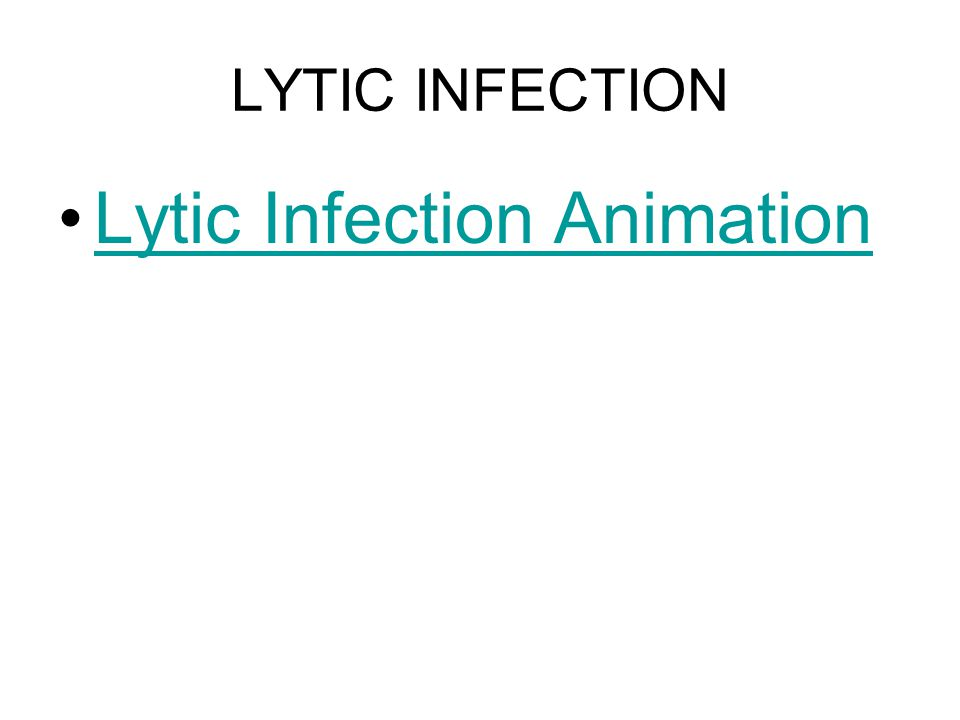 LYTIC INFECTION Lytic Infection Animation