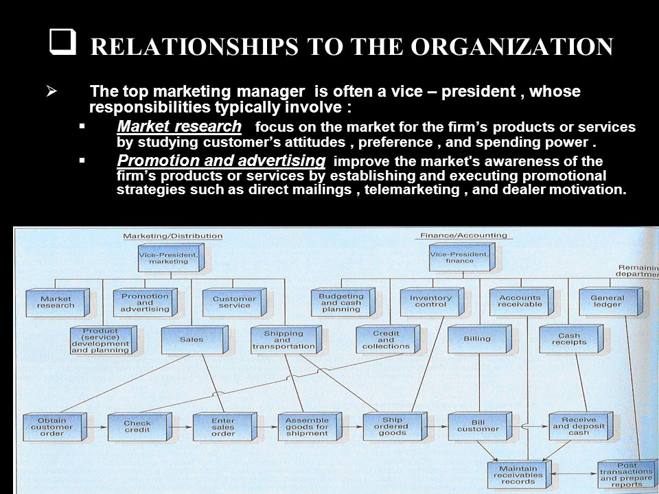 RELATIONSHIPS TO THE ORGANIZATION The top marketing manager is often a vice – president, whose responsibilities typically involve : Market research focus on the market for the firms products or services by studying customers attitudes, preference, and spending power.