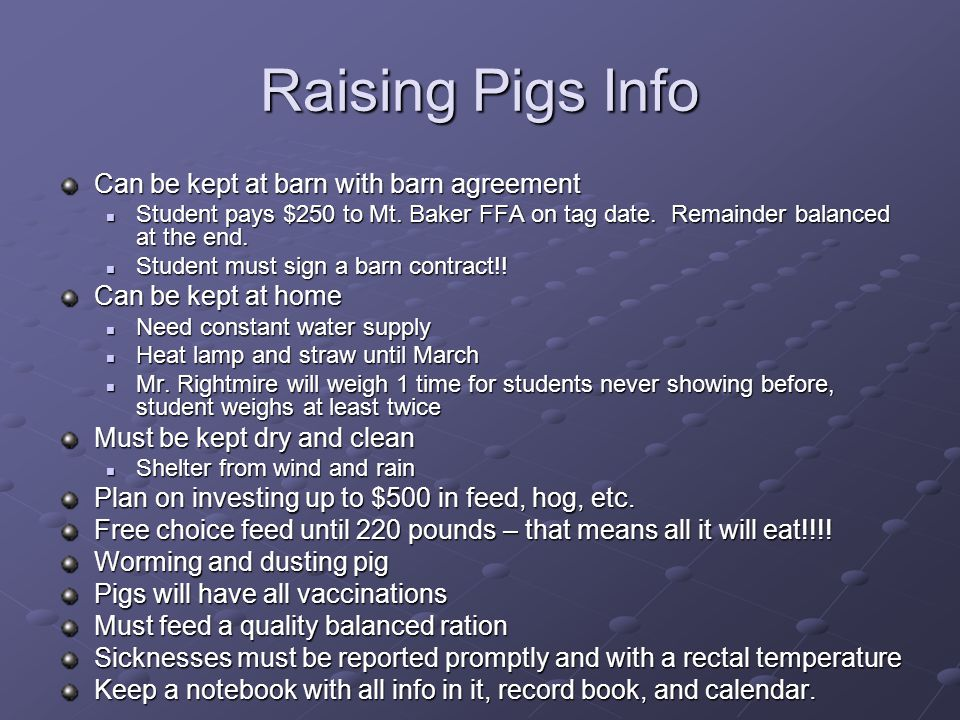Raising Pigs Info Can be kept at barn with barn agreement Student pays $250 to Mt.