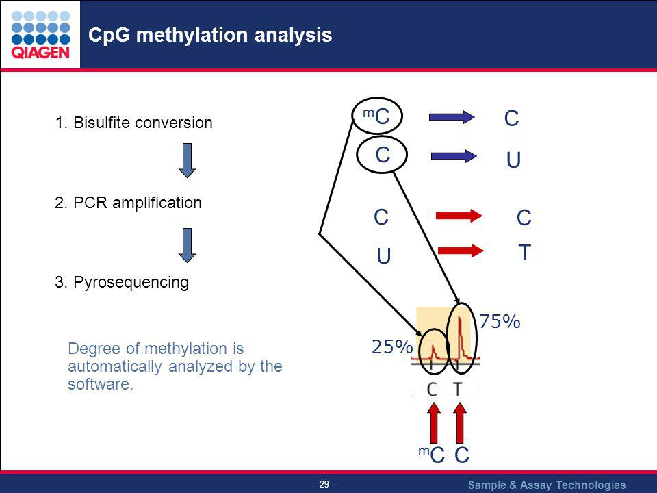 Sample & Assay Technologies - 29 - CpG methylation analysis 1. Bisulfite conversion 2. PCR amplification 3. Pyrosequencing mCmC C C U T C C U mCmCC 25