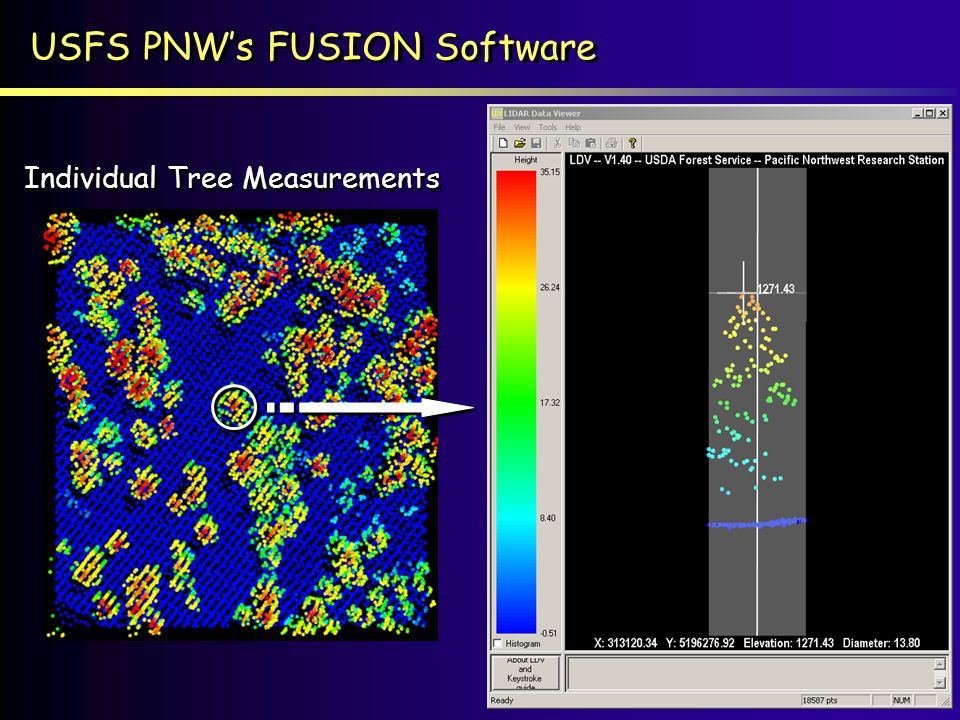 USFS PNWs FUSION Software Individual Tree Measurements