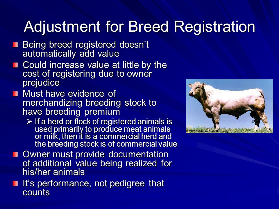 Adjustment for Breed Registration Being breed registered doesnt automatically add value Could increase value at little by the cost of registering due to owner prejudice Must have evidence of merchandizing breeding stock to have breeding premium If a herd or flock of registered animals is used primarily to produce meat animals or milk, then it is a commercial herd and the breeding stock is of commercial value If a herd or flock of registered animals is used primarily to produce meat animals or milk, then it is a commercial herd and the breeding stock is of commercial value Owner must provide documentation of additional value being realized for his/her animals Its performance, not pedigree that counts
