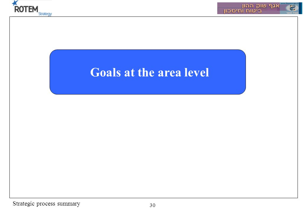 Strategic process summary 30 Goals at the area level