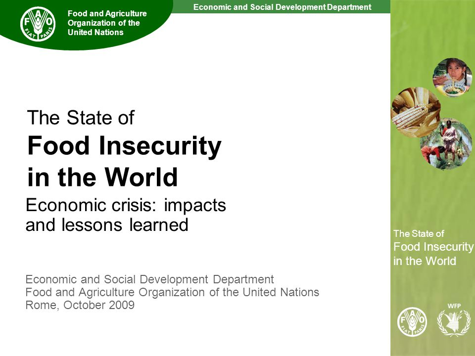 2 The State of Food Insecurity in the World Economic and Social Development Department Food and Agriculture Organization of the United Nations The State of Food Insecurity in the World Some basic terms and definitions Food Security: exists when all people, at all times, have physical, social and economic access to sufficient, safe and nutritious food Undernourishment: describes the status of persons, whose food intake regularly provides less than their minimum energy requirements Hunger Targets: are outlined in two main agreements – the World Food Summit Target and the Millennium Development Goals