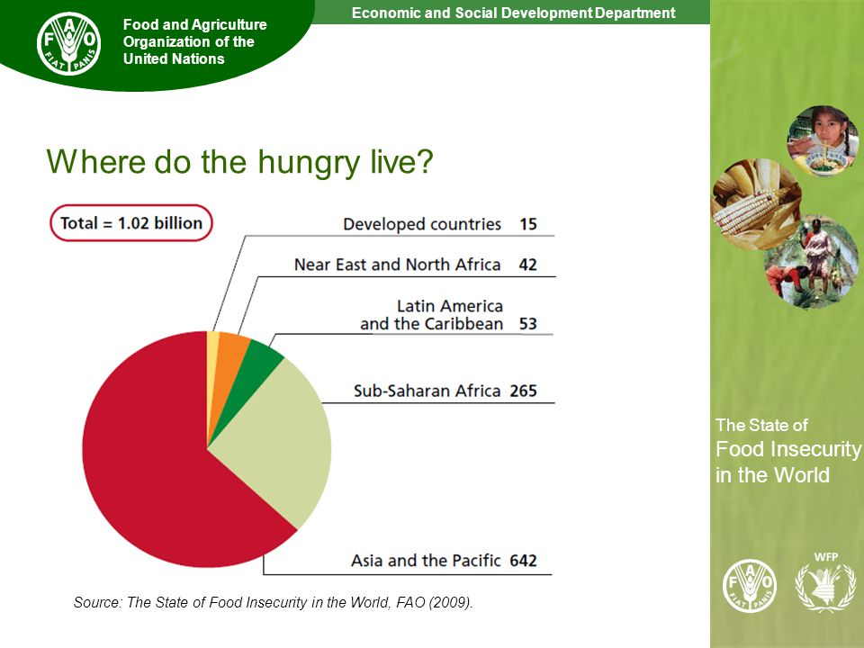 4 The State of Food Insecurity in the World Economic and Social Development Department Food and Agriculture Organization of the United Nations The State of Food Insecurity in the World Where do the hungry live.