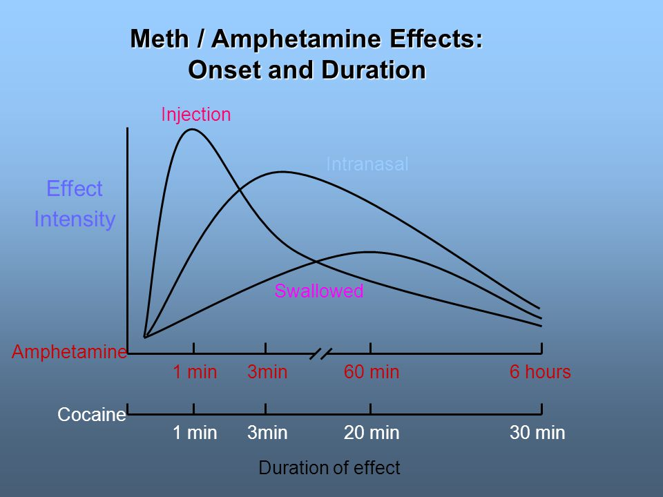Meth / Amphetamine Effects: Onset and Duration 1 min3min60 min6 hours 1 min3min20 min30 min Effect Intensity Amphetamine Cocaine Injection Intranasal Swallowed Duration of effect