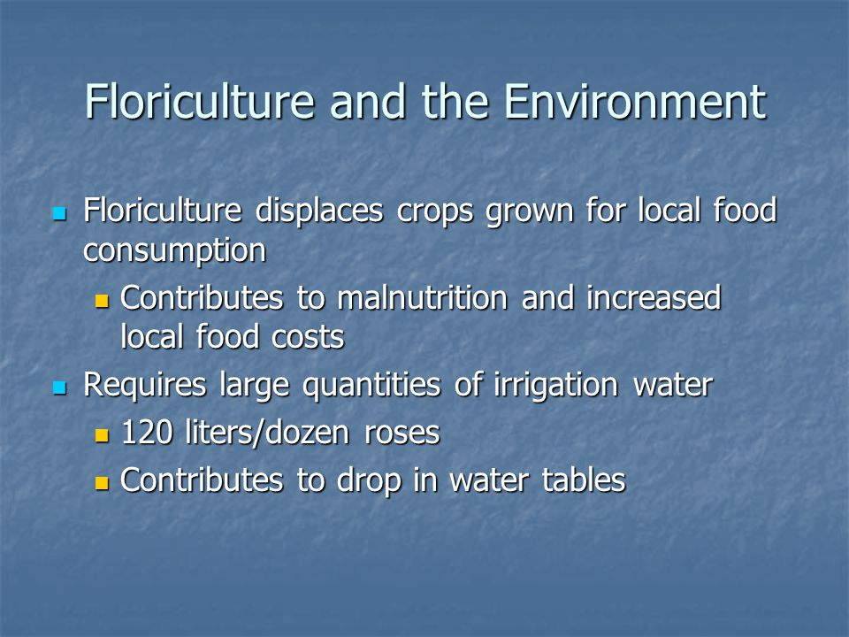 Floriculture and the Environment Floriculture displaces crops grown for local food consumption Floriculture displaces crops grown for local food consumption Contributes to malnutrition and increased local food costs Contributes to malnutrition and increased local food costs Requires large quantities of irrigation water Requires large quantities of irrigation water 120 liters/dozen roses 120 liters/dozen roses Contributes to drop in water tables Contributes to drop in water tables