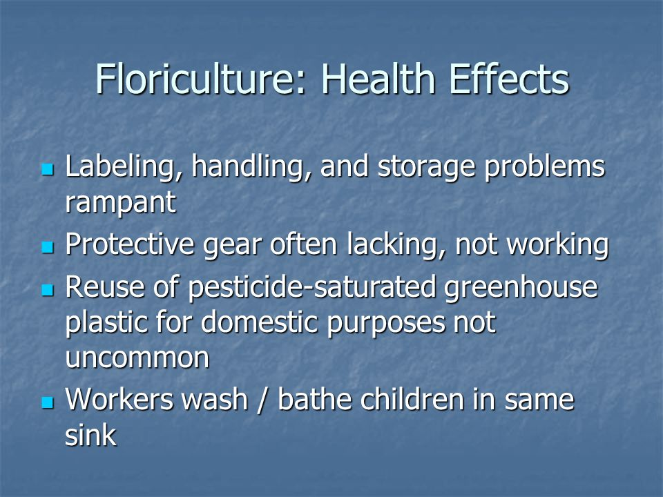 Floriculture: Health Effects Labeling, handling, and storage problems rampant Labeling, handling, and storage problems rampant Protective gear often lacking, not working Protective gear often lacking, not working Reuse of pesticide-saturated greenhouse plastic for domestic purposes not uncommon Reuse of pesticide-saturated greenhouse plastic for domestic purposes not uncommon Workers wash / bathe children in same sink Workers wash / bathe children in same sink