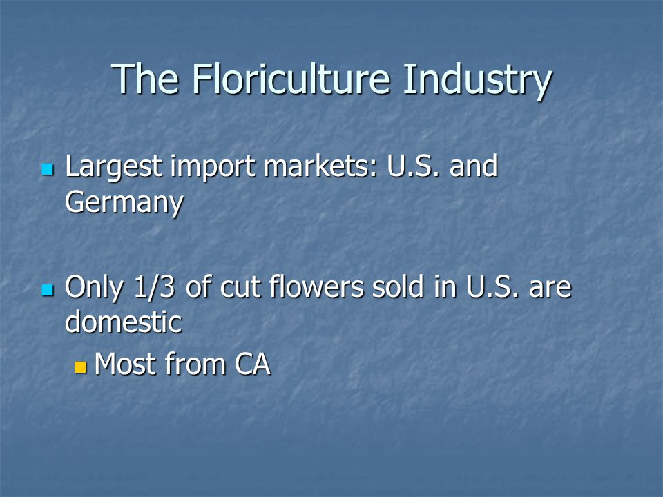 The Floriculture Industry Largest import markets: U.S. and Germany Largest import markets: U.S. and Germany Only 1/3 of cut flowers sold in U.S. are d