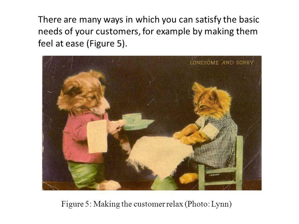 There are many ways in which you can satisfy the basic needs of your customers, for example by making them feel at ease (Figure 5).