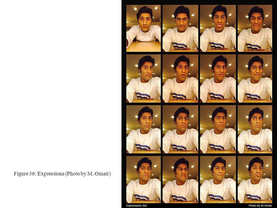 Figure 36: Expressions (Photo by M. Omair)