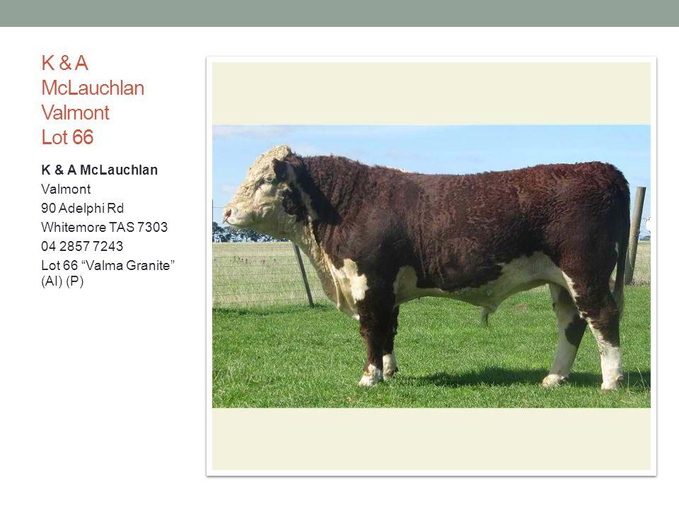 K & A McLauchlan Valmont Lot 66 K & A McLauchlan Valmont 90 Adelphi Rd Whitemore TAS 7303 04 2857 7243 Lot 66 Valma Granite (AI) (P)