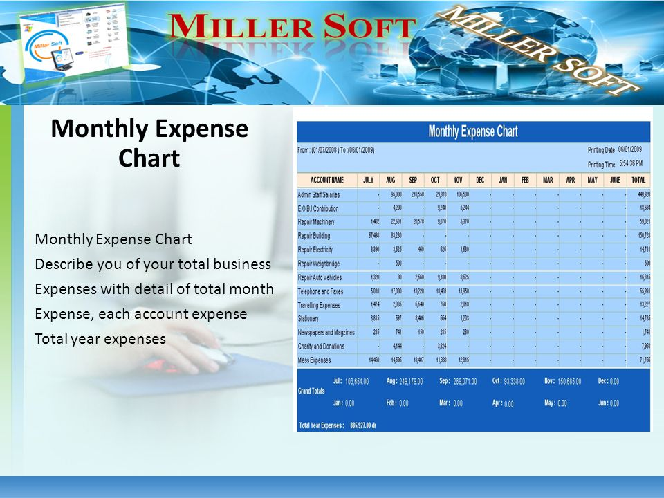 Monthly Expense Chart Describe you of your total business Expenses with detail of total month Expense, each account expense Total year expenses Monthl