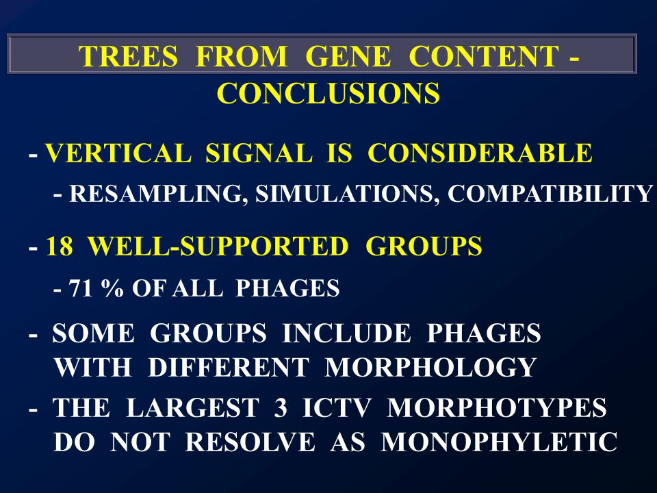 TREES FROM GENE CONTENT - CONCLUSIONS - VERTICAL SIGNAL IS CONSIDERABLE - RESAMPLING, SIMULATIONS, COMPATIBILITY - 18 WELL-SUPPORTED GROUPS - 71 % OF ALL PHAGES - SOME GROUPS INCLUDE PHAGES WITH DIFFERENT MORPHOLOGY - THE LARGEST 3 ICTV MORPHOTYPES DO NOT RESOLVE AS MONOPHYLETIC