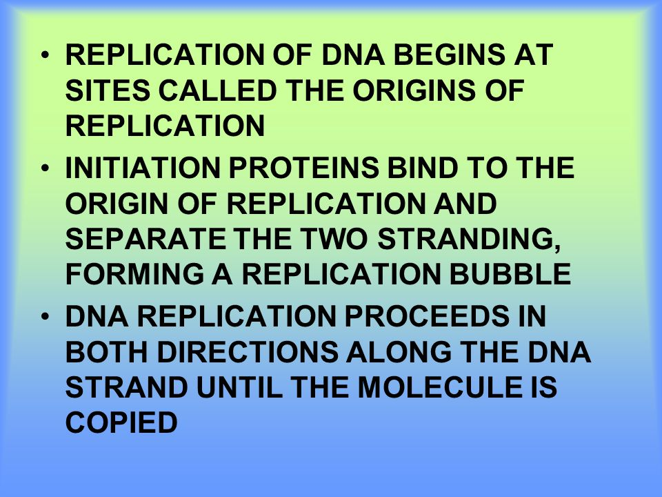 REPLICATION OF DNA BEGINS AT SITES CALLED THE ORIGINS OF REPLICATION INITIATION PROTEINS BIND TO THE ORIGIN OF REPLICATION AND SEPARATE THE TWO STRAND