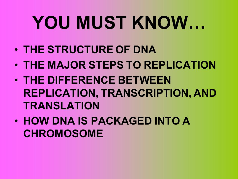 YOU MUST KNOW… THE STRUCTURE OF DNA THE MAJOR STEPS TO REPLICATION THE DIFFERENCE BETWEEN REPLICATION, TRANSCRIPTION, AND TRANSLATION HOW DNA IS PACKA