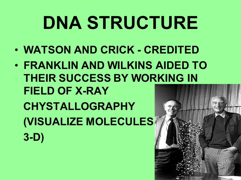 DNA STRUCTURE WATSON AND CRICK - CREDITED FRANKLIN AND WILKINS AIDED TO THEIR SUCCESS BY WORKING IN FIELD OF X-RAY CHYSTALLOGRAPHY (VISUALIZE MOLECULE
