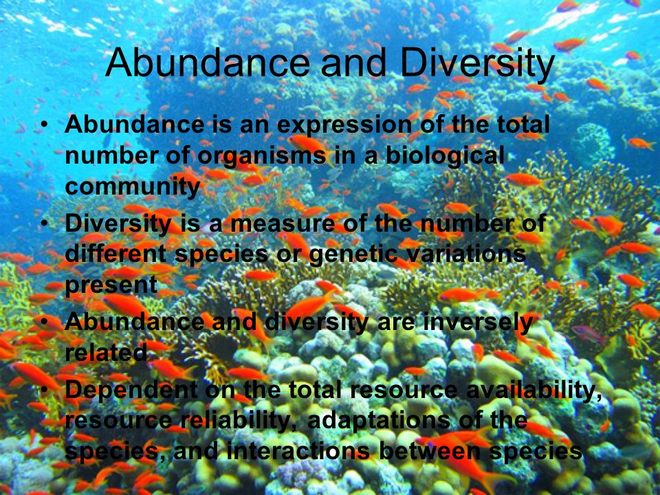 Abundance and Diversity Abundance is an expression of the total number of organisms in a biological community Diversity is a measure of the number of