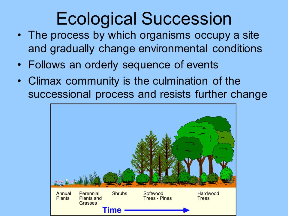 Ecological Succession The process by which organisms occupy a site and gradually change environmental conditions Follows an orderly sequence of events