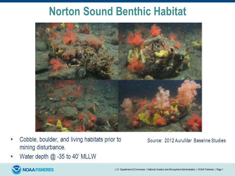 Norton Sound Benthic Habitat Similar habitats after being exposed to mining activities.