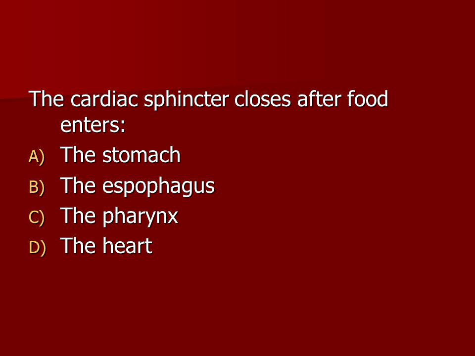 The cardiac sphincter closes after food enters: A) The stomach B) The espophagus C) The pharynx D) The heart