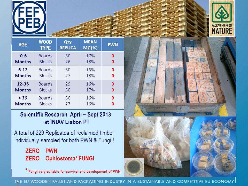 P AGE WOOD TYPE Qty REPLICA MEAN MC (%) PWN 0-6 Months Boards Blocks 30 26 17% 18% 0000 6-12 Months Boards Blocks 30 27 16% 18% 0000 12-36 Months Boar