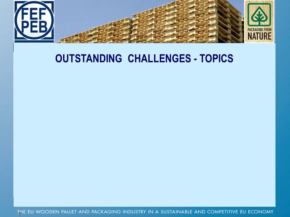 P OUTSTANDING CHALLENGES - TOPICS