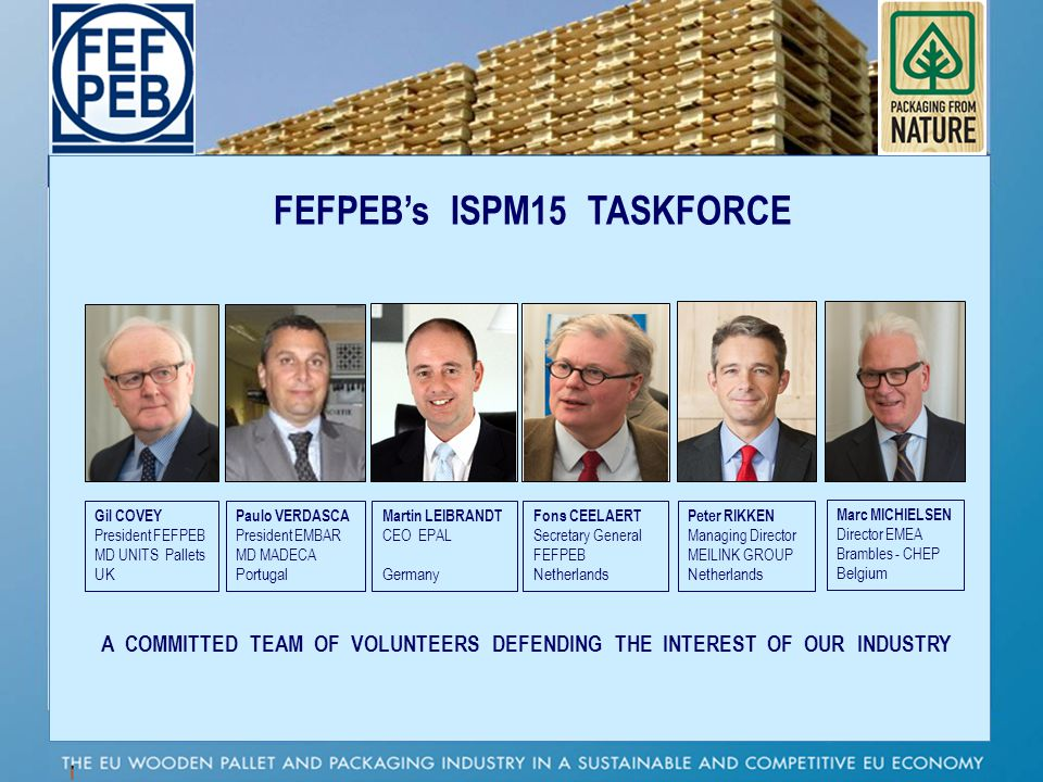 FEFPEBs ISPM15 TASKFORCE A COMMITTED TEAM OF VOLUNTEERS DEFENDING THE INTEREST OF OUR INDUSTRY Gil COVEY President FEFPEB MD UNITS Pallets UK Paulo VE