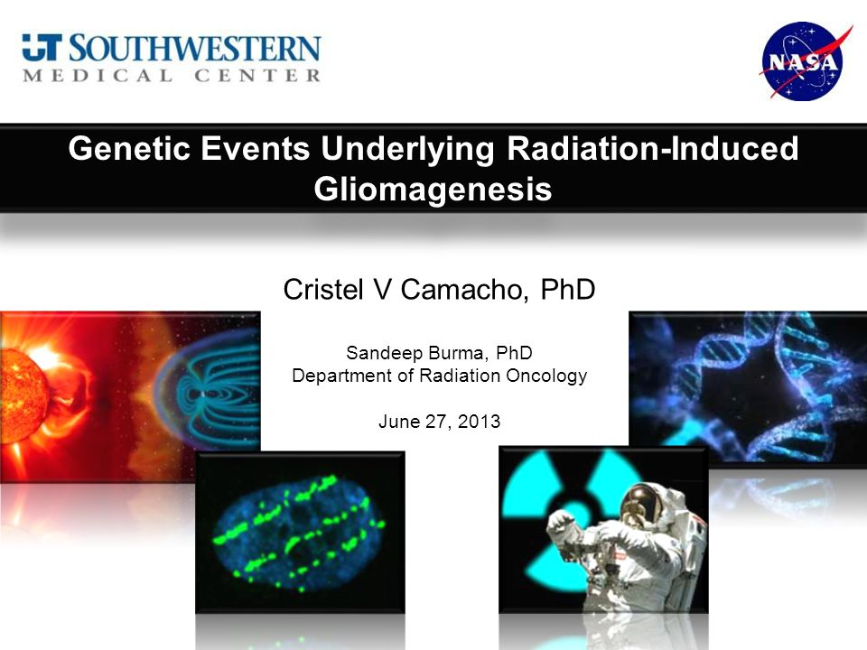 Cristel V Camacho, PhD Sandeep Burma, PhD Department of Radiation Oncology June 27, 2013 Genetic Events Underlying Radiation-Induced Gliomagenesis