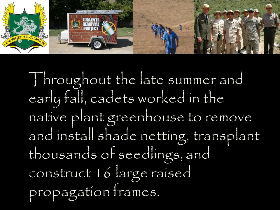 Throughout the late summer and early fall, cadets worked in the native plant greenhouse to remove and install shade netting, transplant thousands of seedlings, and construct 16 large raised propagation frames.