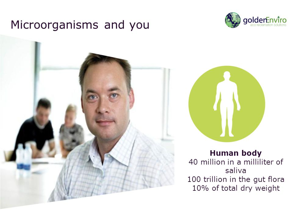 Microorganisms and you Human body 40 million in a milliliter of saliva 100 trillion in the gut flora 10% of total dry weight