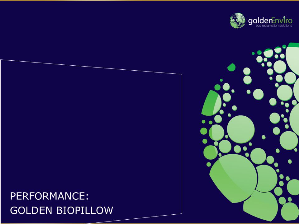 Products ranked by performance 3 RD PARTY TESTING OF GOLDEN BIOPILLOW Alkane removal (%) Aromatics removal (%) Average Golden bioPillow99.992.196.0 Competitor 197.088.092.5 Competitor 289.889.689.7 Competitor 399.177.088.1 Competitor 496.873.185.0 Competitor 599.067.083.0 Competitor 697.047.072.0 Competitor 792.639.065.8 Competitor 889.138.263.7 Competitor 944.054.549.3
