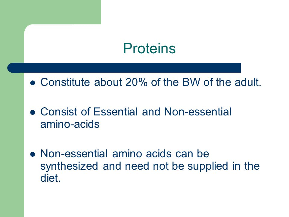 Proteins Constitute about 20% of the BW of the adult.
