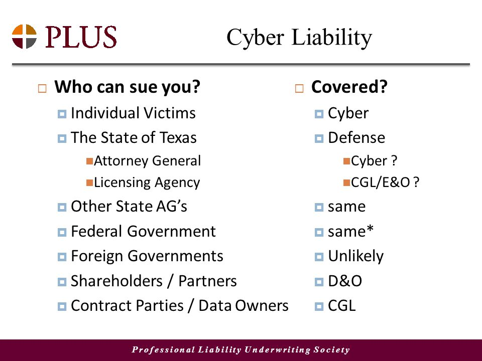 Professional Liability Underwriting Society Cyber Liability Who can sue you.
