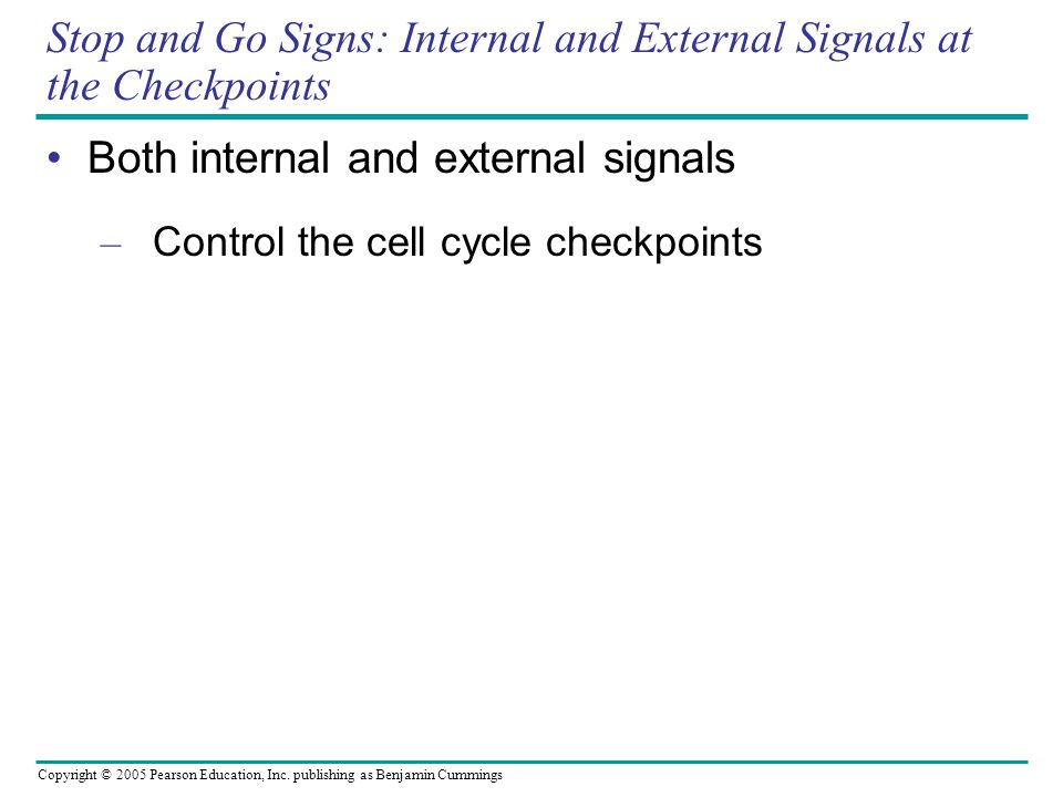 Copyright © 2005 Pearson Education, Inc. publishing as Benjamin Cummings Stop and Go Signs: Internal and External Signals at the Checkpoints Both inte