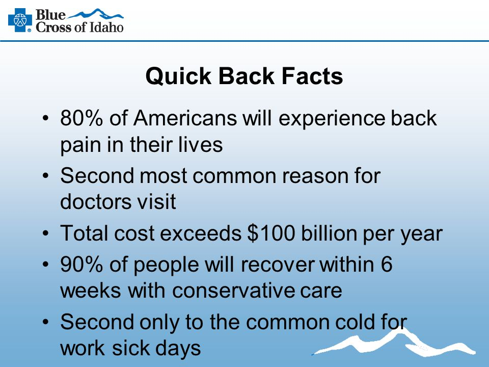 Quick Back Facts 80% of Americans will experience back pain in their lives Second most common reason for doctors visit Total cost exceeds $100 billion