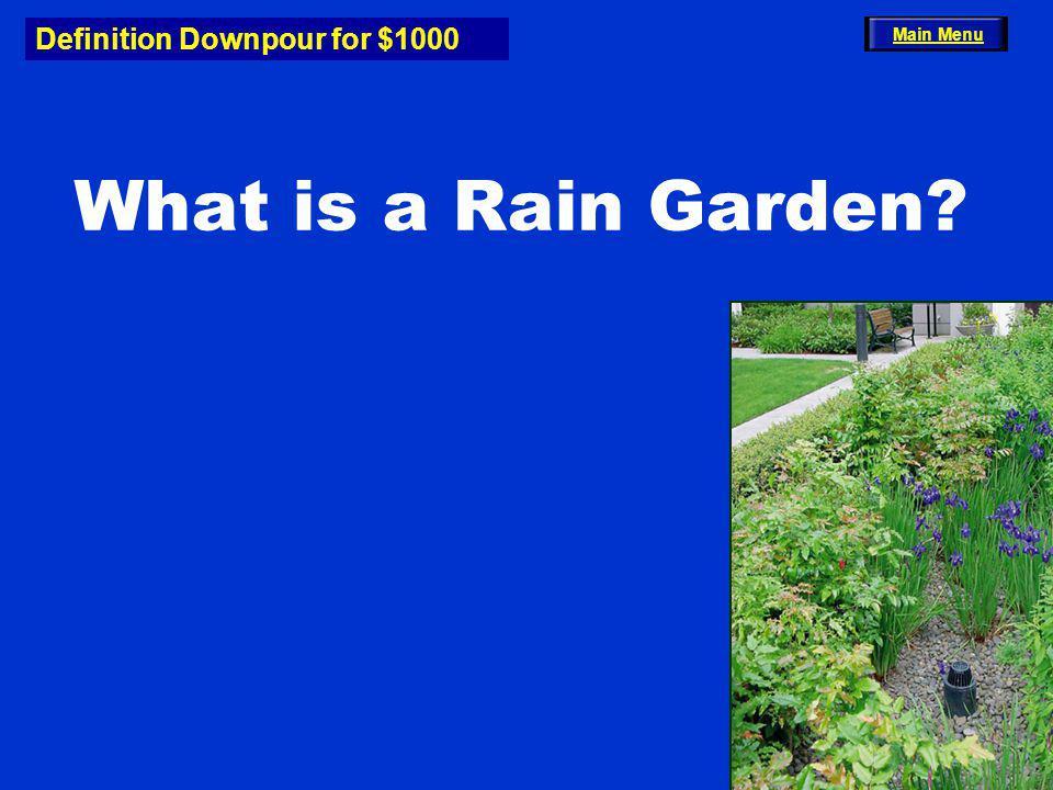 Definition Downpour for $1000 What is a Rain Garden Main Menu