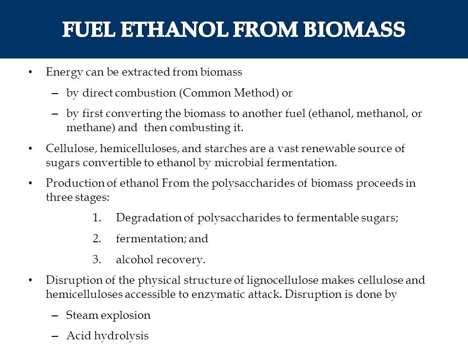 Energy can be extracted from biomass – by direct combustion (Common Method) or – by first converting the biomass to another fuel (ethanol, methanol, o