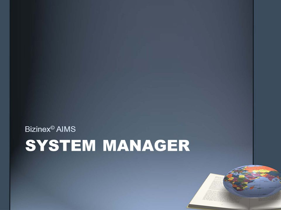 SYSTEM MANAGER Bizinex © AIMS