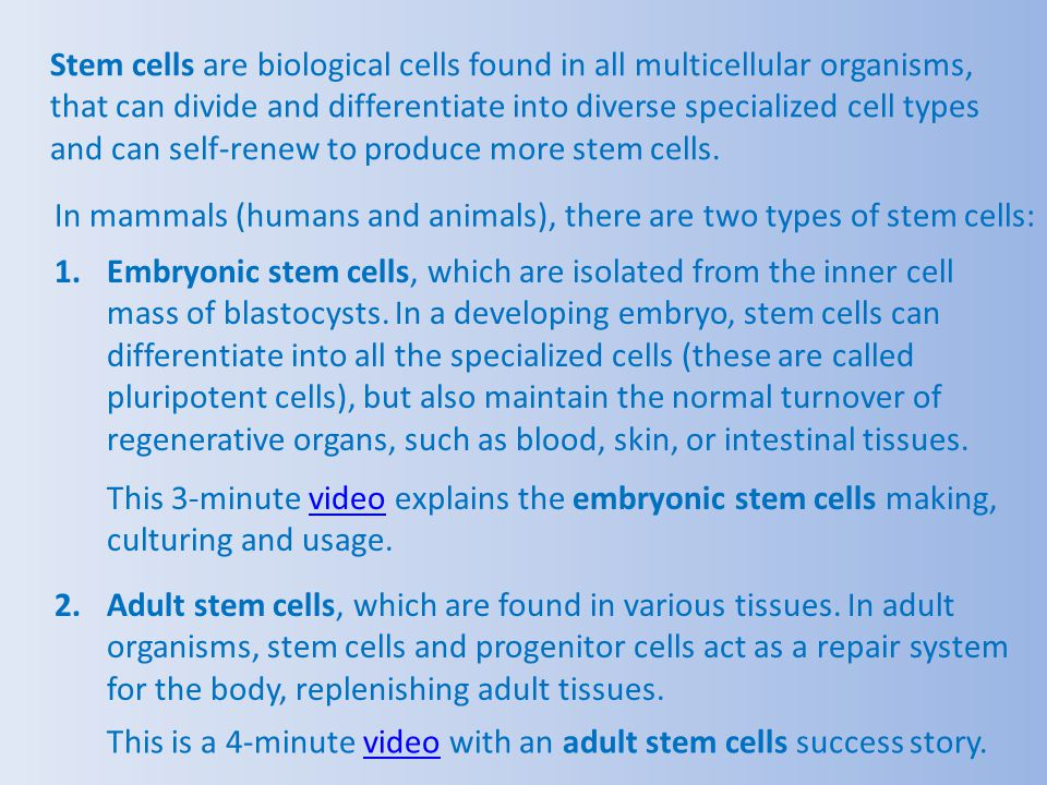This is a 4-minute video with an adult stem cells success story.video This 3-minute video explains the embryonic stem cells making, culturing and usag