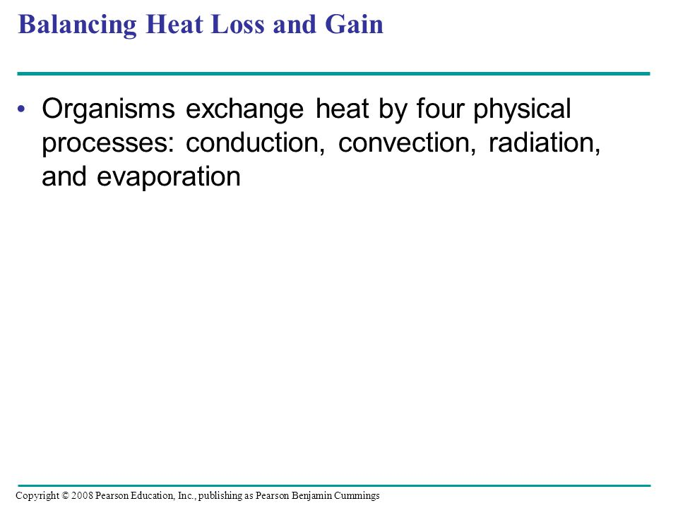 Balancing Heat Loss and Gain Organisms exchange heat by four physical processes: conduction, convection, radiation, and evaporation Copyright © 2008 P