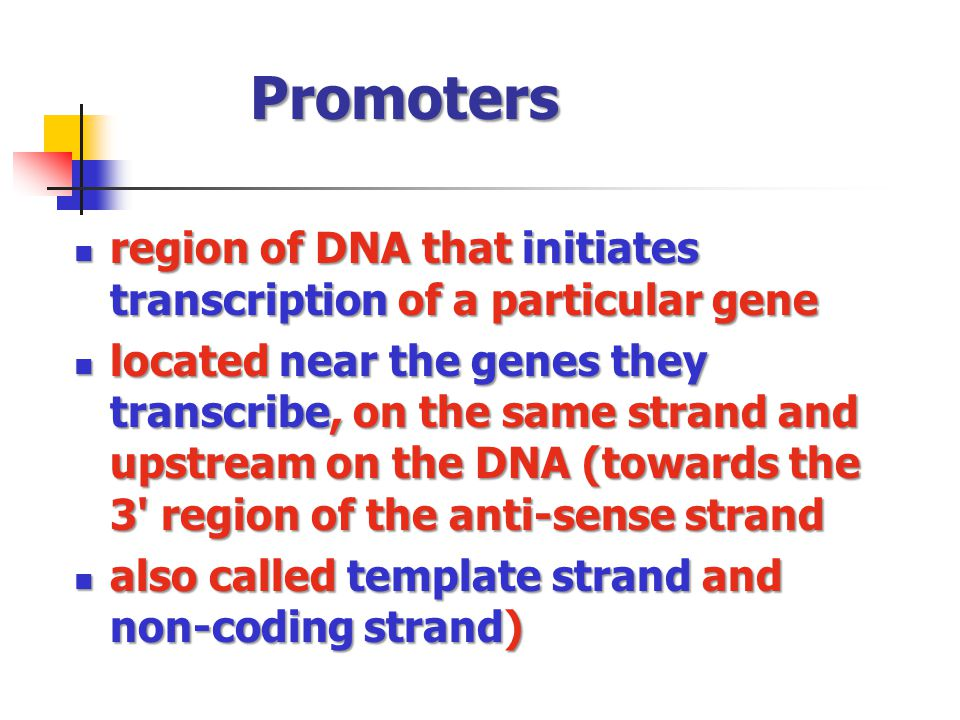Promoters region of DNA that initiates transcription of a particular gene region of DNA that initiates transcription of a particular gene located near