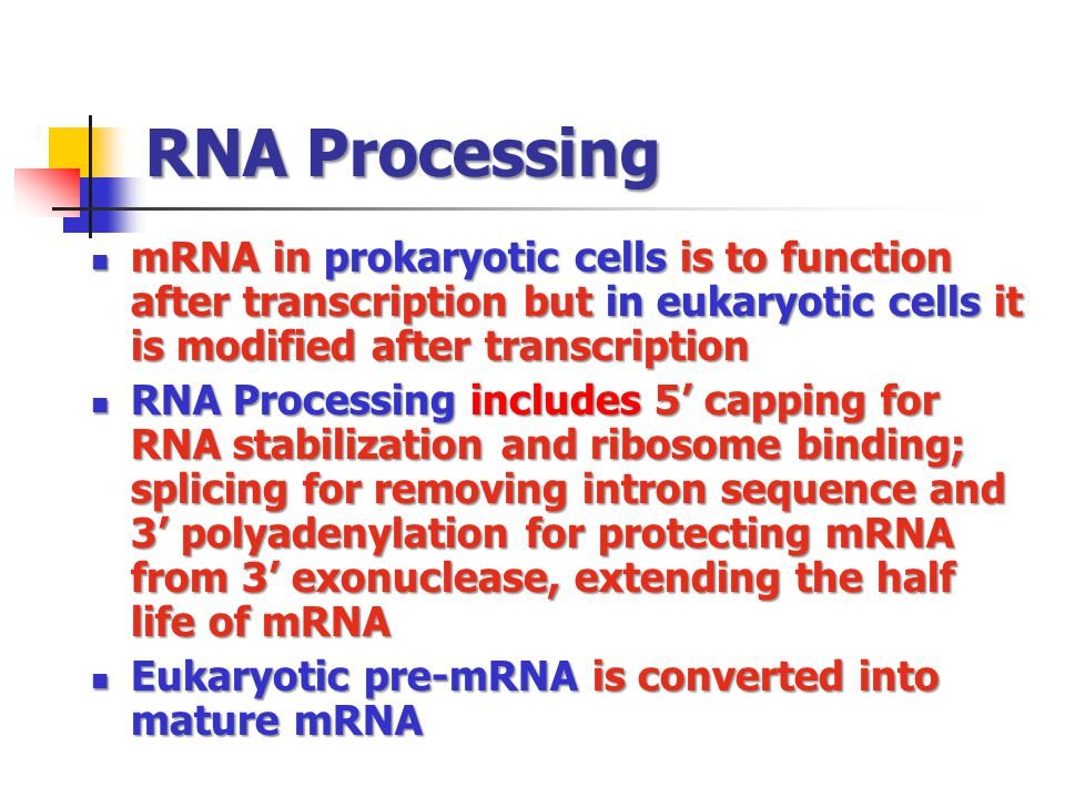 RNA Processing mRNA in prokaryotic cells is to function after transcription but in eukaryotic cells it is modified after transcription mRNA in prokary