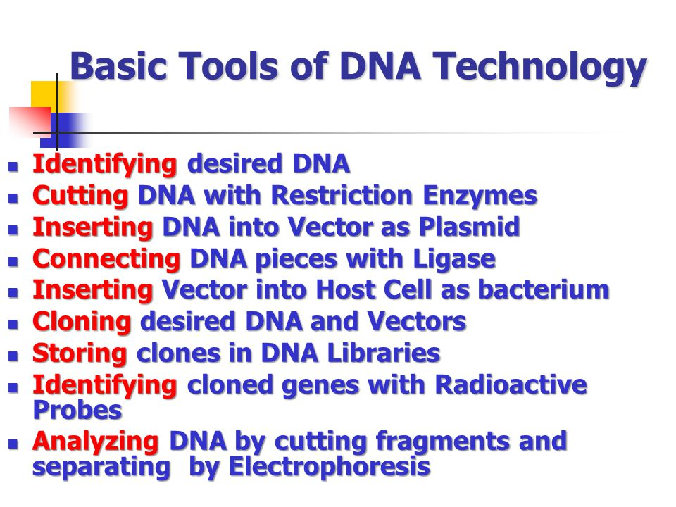 Basic Tools of DNA Technology Identifying desired DNA Identifying desired DNA Cutting DNA with Restriction Enzymes Cutting DNA with Restriction Enzyme