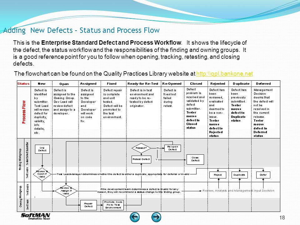 18 Adding New Defects – Status and Process Flow This is the Enterprise Standard Defect and Process Workflow. It shows the lifecycle of the defect, the