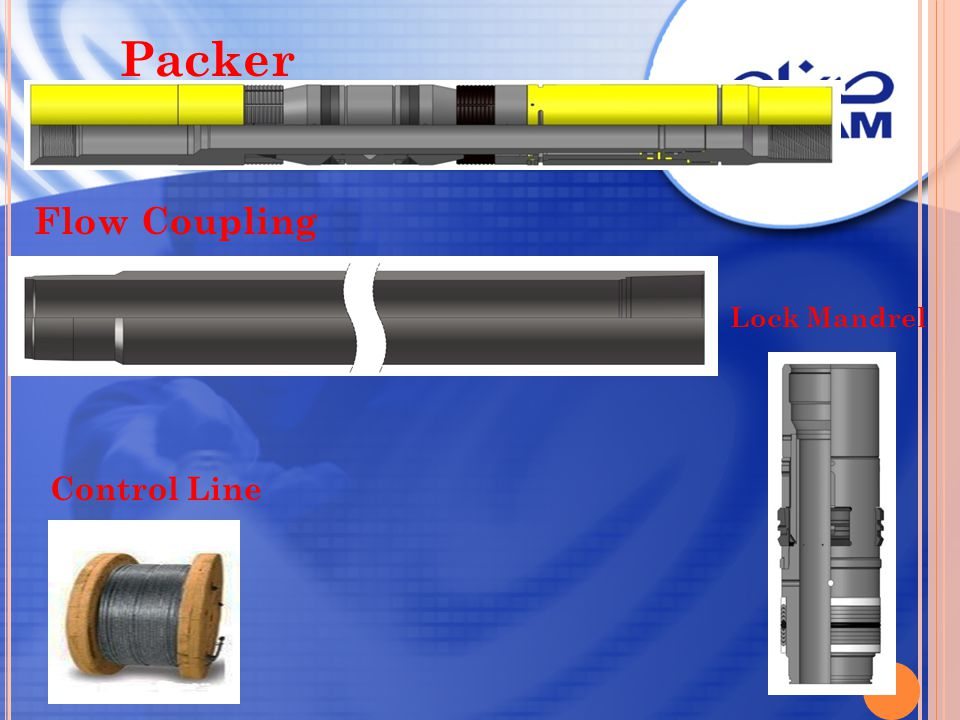 Packer Flow Coupling Control Line Lock Mandrel