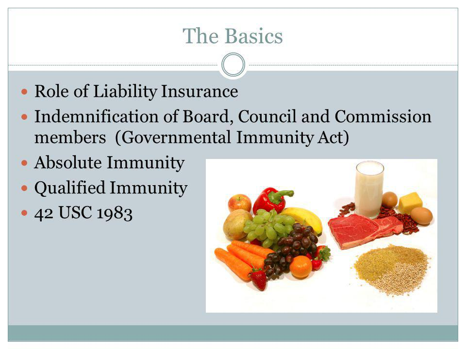 The Basics Role of Liability Insurance Indemnification of Board, Council and Commission members (Governmental Immunity Act) Absolute Immunity Qualifie