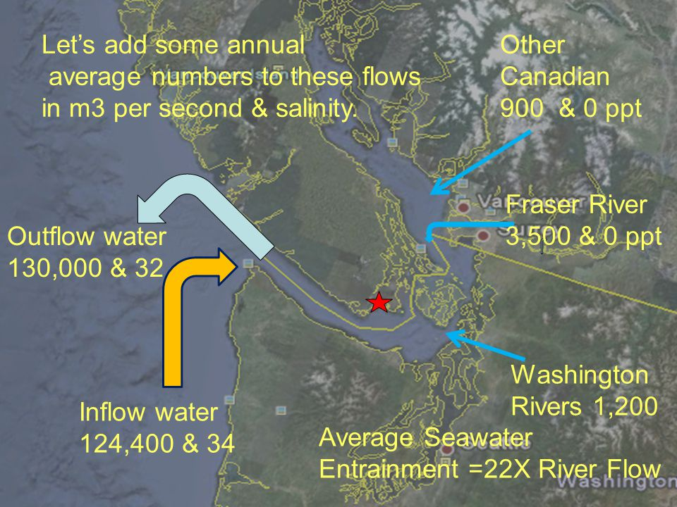 Lets add some annual average numbers to these flows in m3 per second & salinity. Fraser River 3,500 & 0 ppt Outflow water 130,000 & 32 Inflow water 12