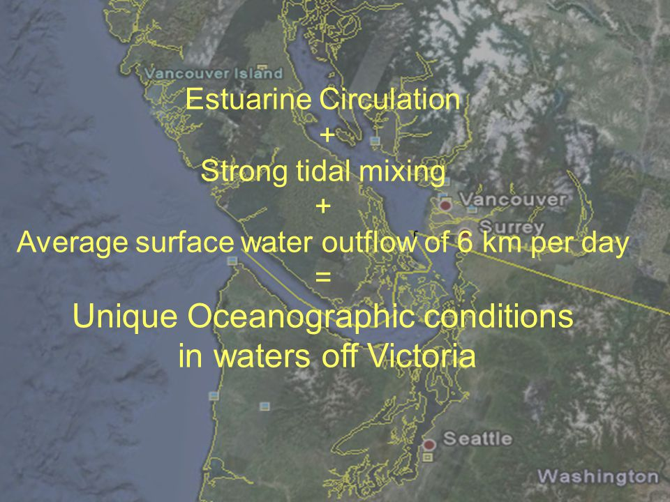 Estuarine Circulation + Strong tidal mixing + Average surface water outflow of 6 km per day = Unique Oceanographic conditions in waters off Victoria