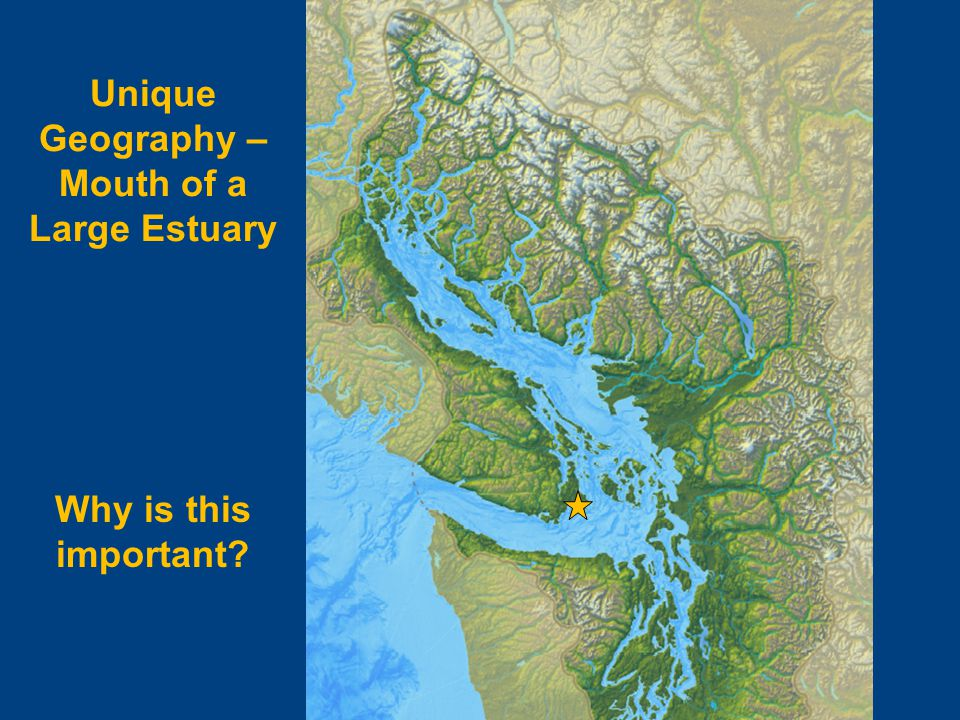 Why is this important? Unique Geography – Mouth of a Large Estuary